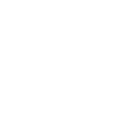 Autoescuela San Lorenzo camion-permiso-C-1